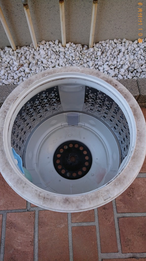 可能なら洗濯機ホースもクリーニングして欲しい。